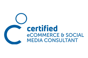 ecommerce-social-media-consultant